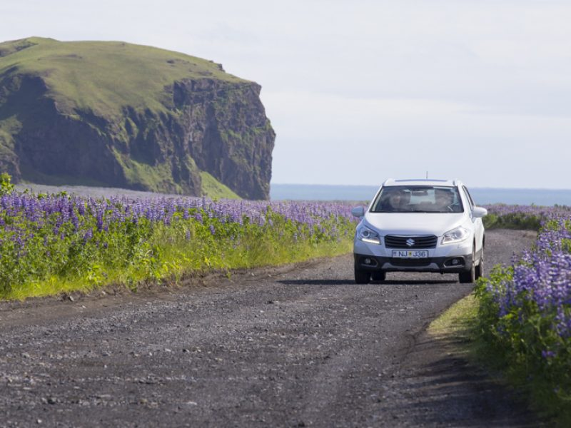 iceland south coast self drive summer william gray 1 of 1