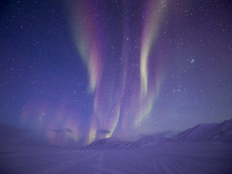 svalbard winter northern lights william gray