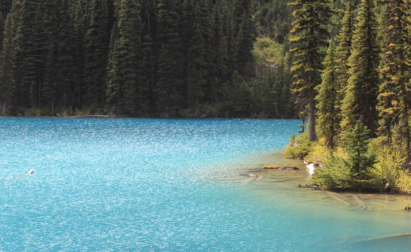 joffre lakes british columbia
