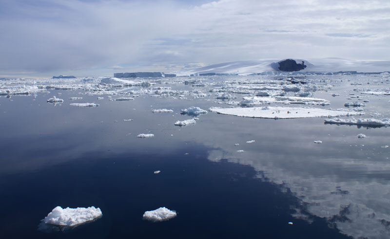 antarctica weddell sea fridtjof sound ice floes ll
