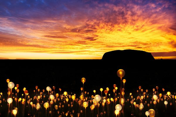 australia northern territory uluru field of light