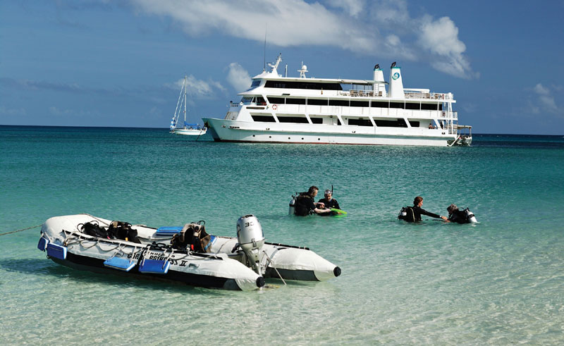 australia queensland great barrier reef snorkelling cpc