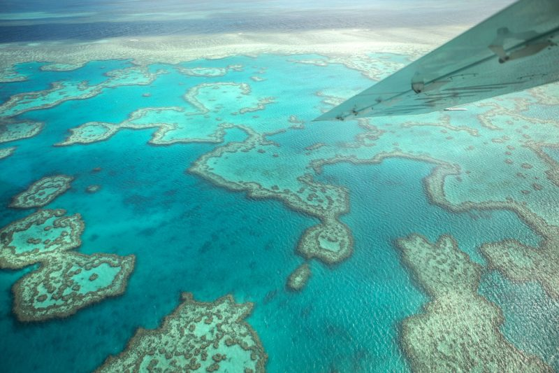 australia queensland seaplane reef view istk