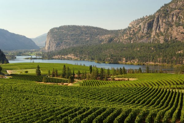 canada british columbia okanagan vineyards istk