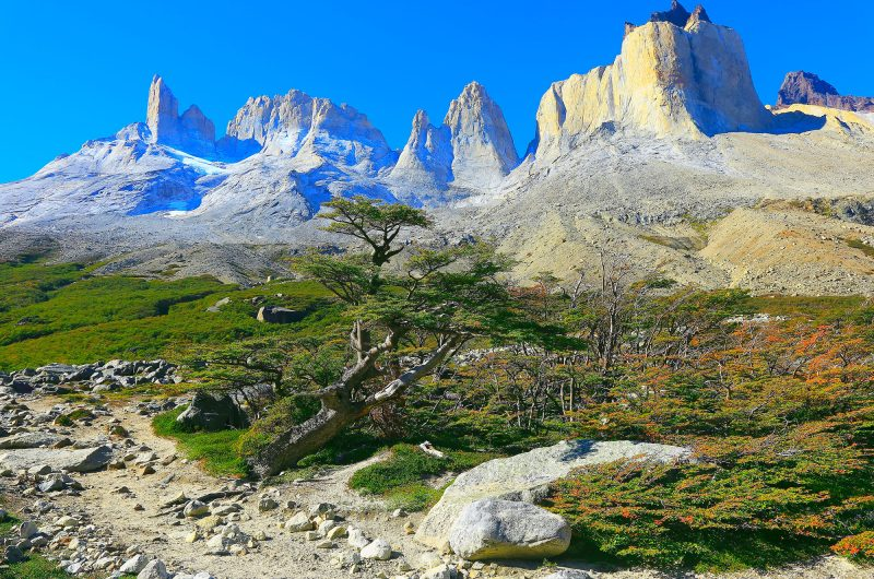 chile patagonia french valley hiking trail istk
