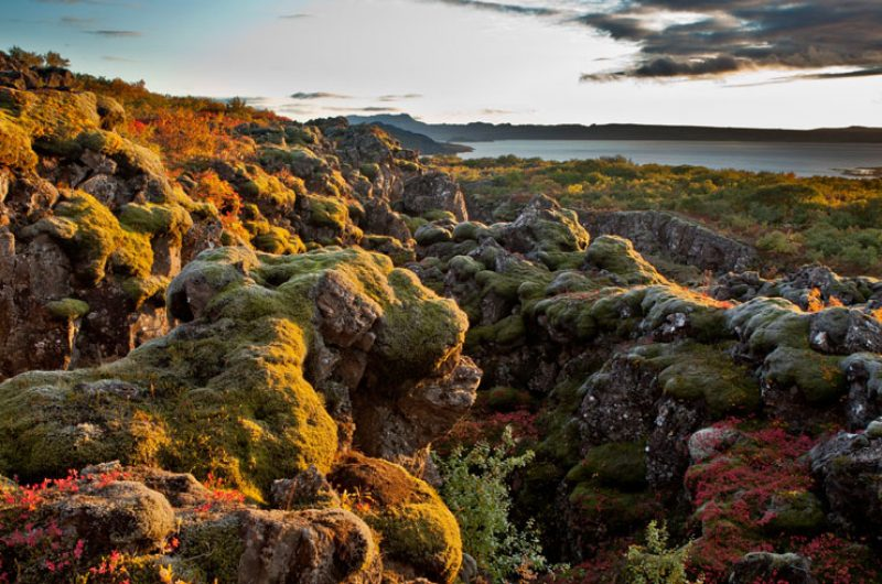 iceland south west thingvellir national park autumn rth