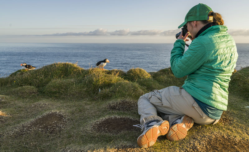 iceland west fjords latrabjarg photographing puffins rth