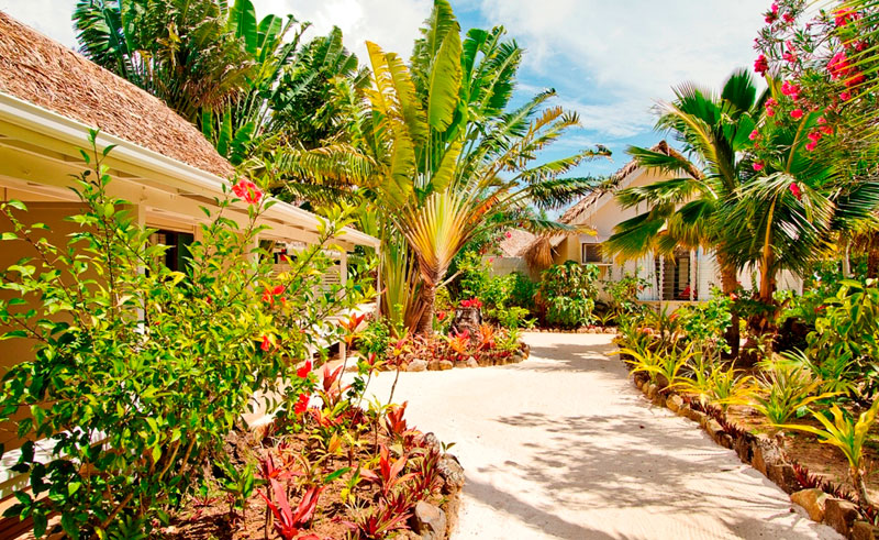 manuia beach resort premium accommodation