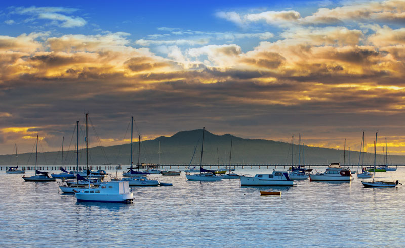 new zealand auckland okahu bay boats ta