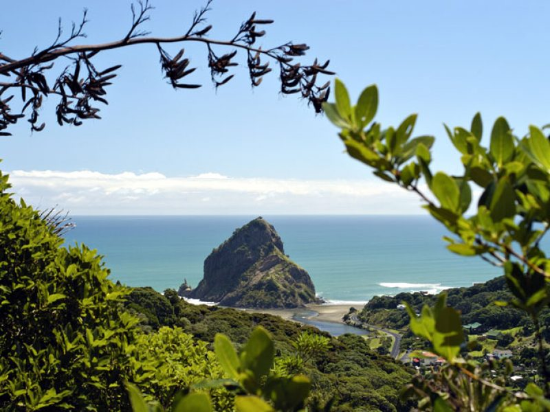 new zealand auckland west coast piha tnz