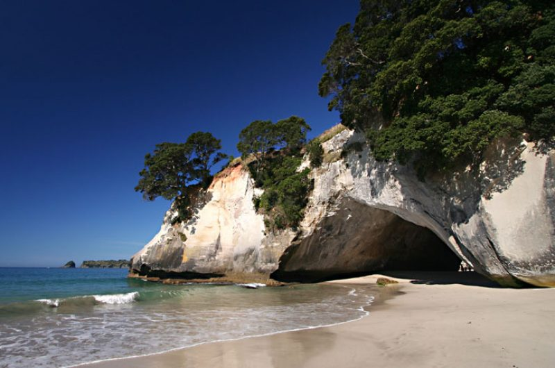 new zealand coromandel cathedral cove tc