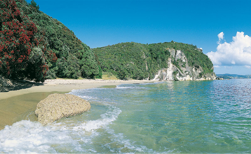 new zealand coromandel lonely bay tc
