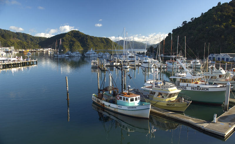 new zealand marlborough picton harbour dm