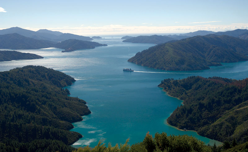 new zealand marlborough sounds interislander ferry