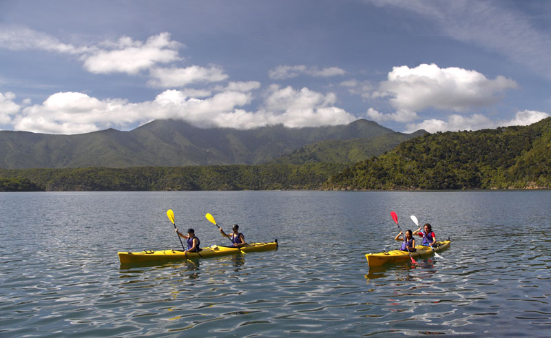 new zealand marlborough sounds sea kayaking dm