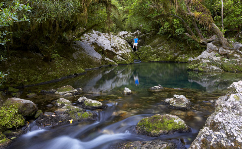 new zealand nelson motueka crystal pools hiking tnz