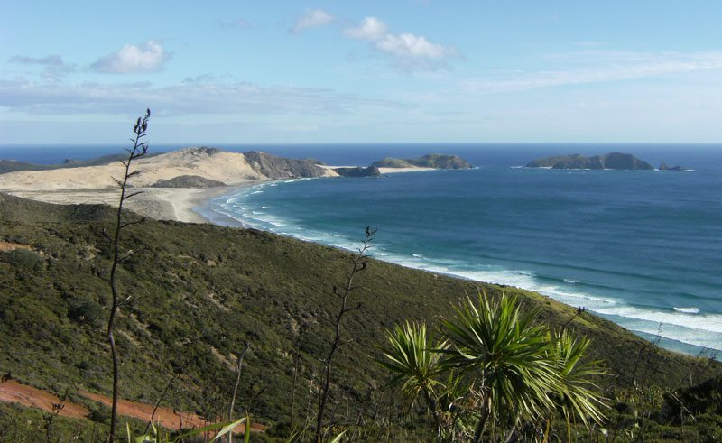 new zealand northland cape reinga coastline ls