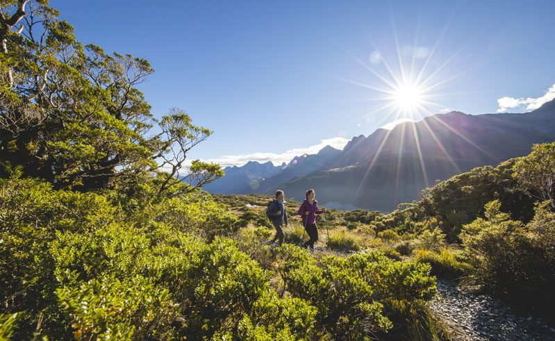 new zealand southern lakes hiking the routeburn track tnz