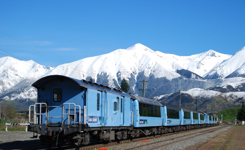 new zealand tranzalpine train tnz