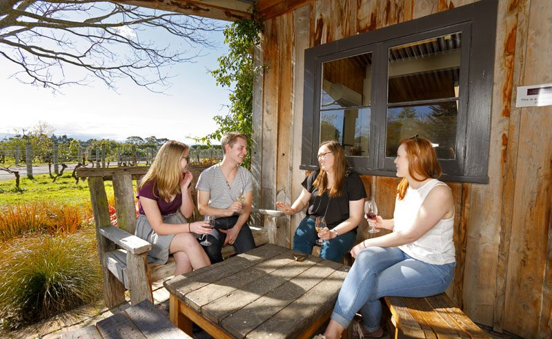 new zealand wairarapa wine tasting tnz