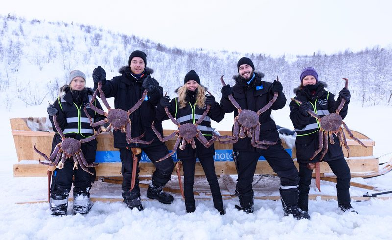 northern norway kirkenes king crab safari