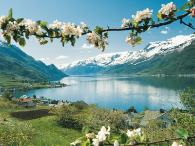 norway fjords lofthus blossom vn
