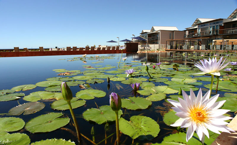 novotel ningaloo resort pond