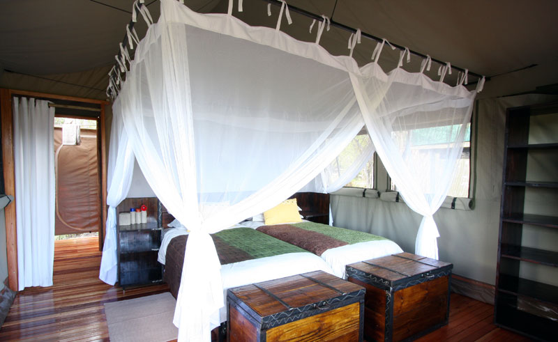 sango safari camp room
