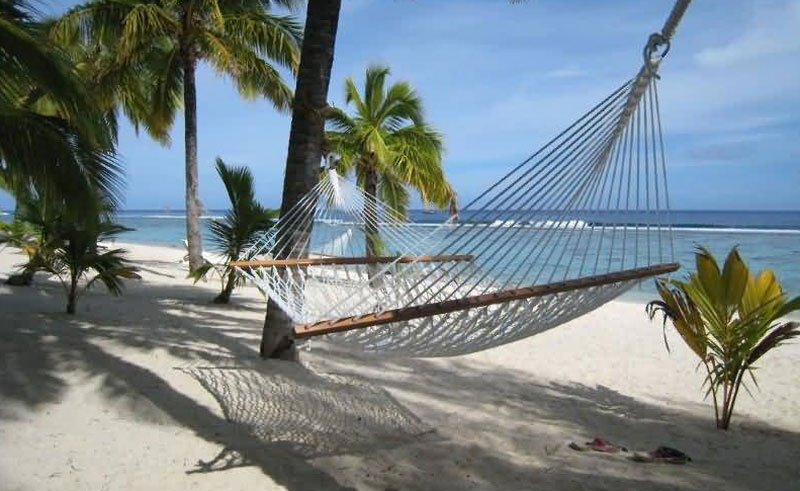 sunset resort rarotonga beach hammock