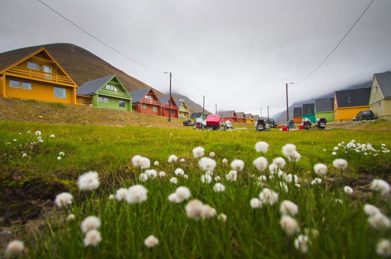 svalbard longyearbyen coloured houses summer istock