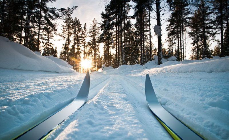 sweden cross sountry skiing istock