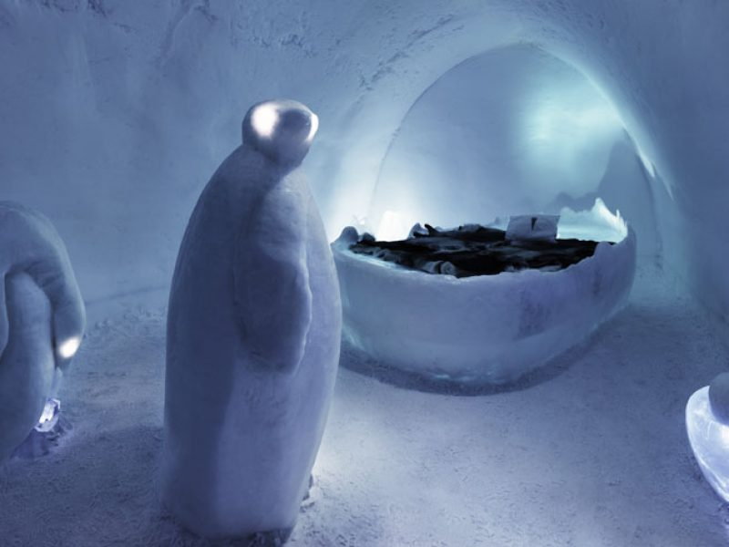 sweden lapland icehotel art suite penguins era