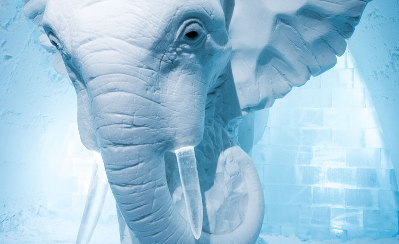 sweden lapland icehotel art suite2016 elephant in the room