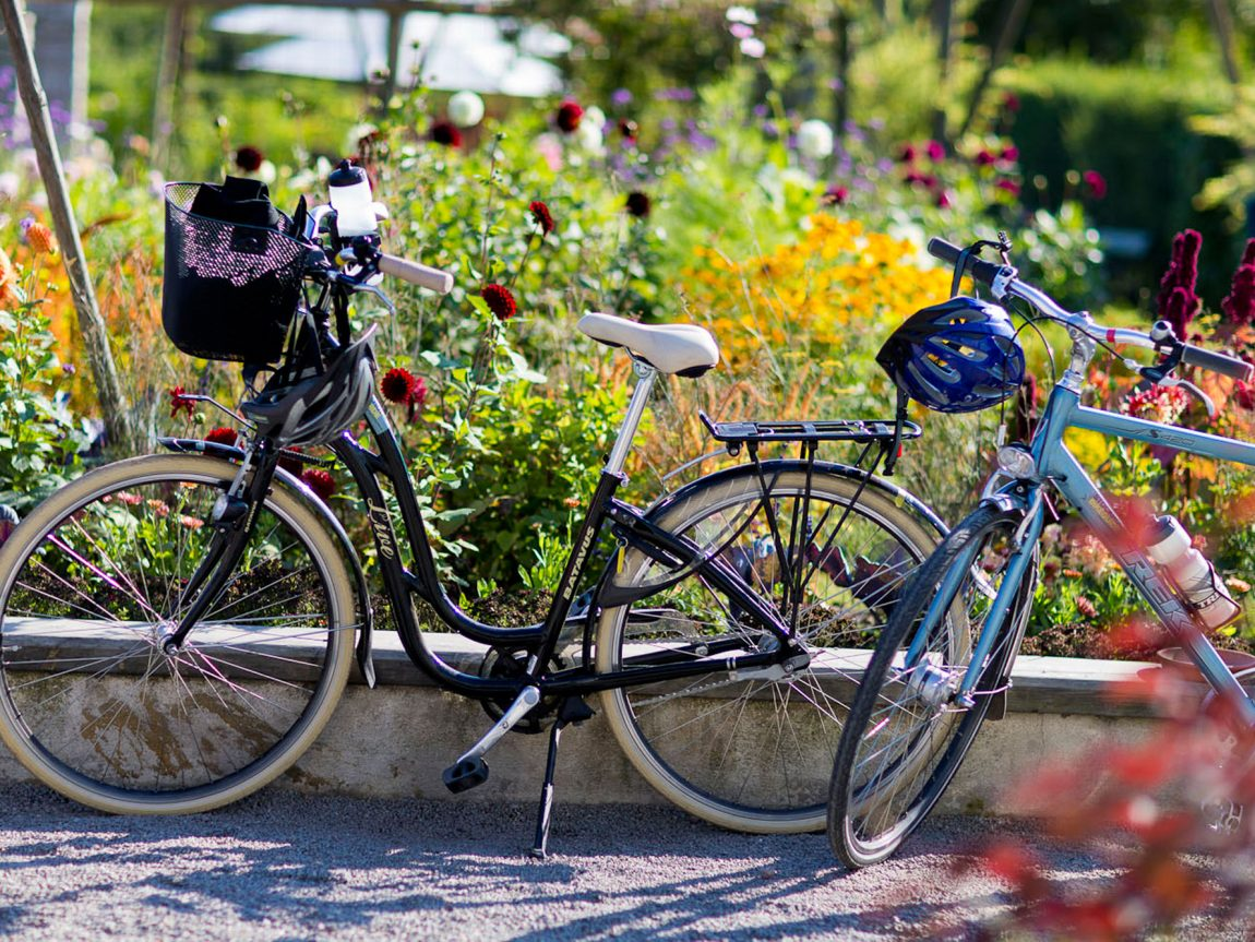sweden stockholm summer bicycles