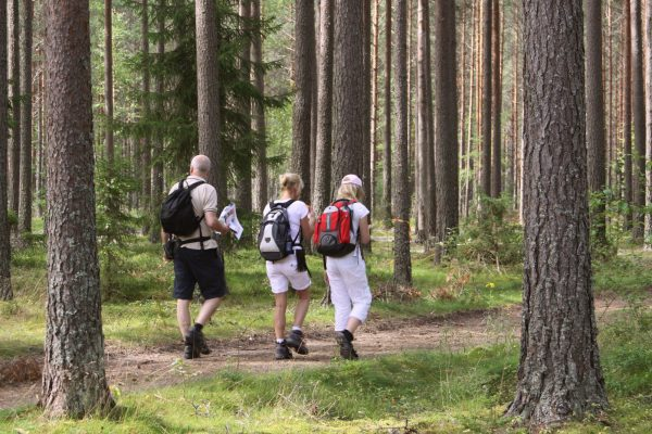 sweden varmland family hiking wtrwld