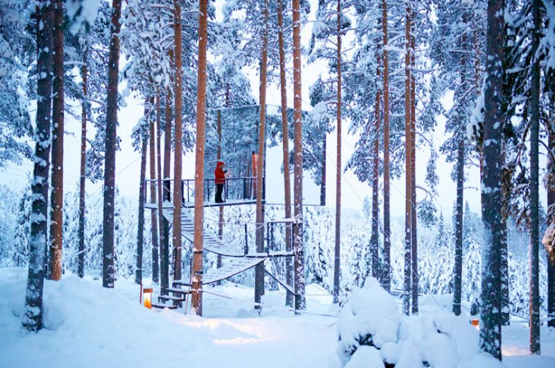 treehotel mirror cube