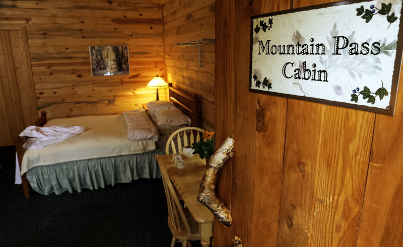winterlake lodge room mountain pass cabin