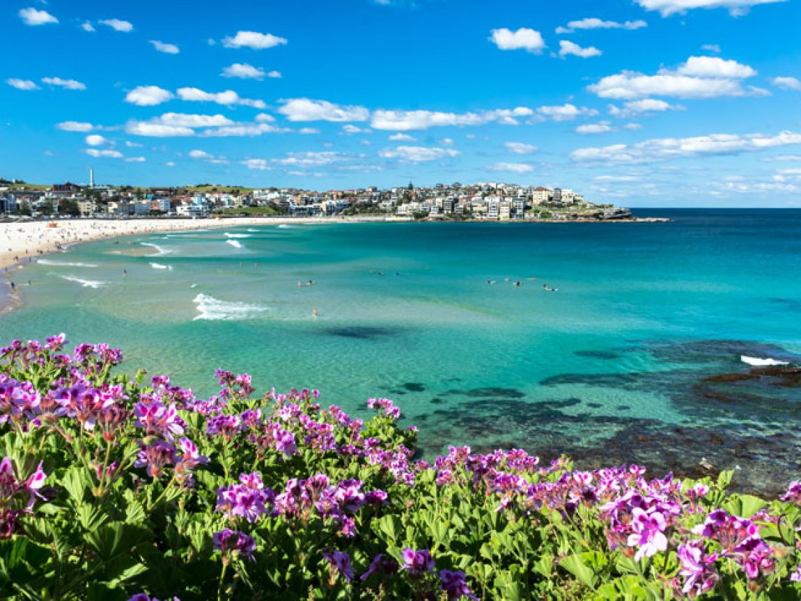 australia new south wales bondi beach view is