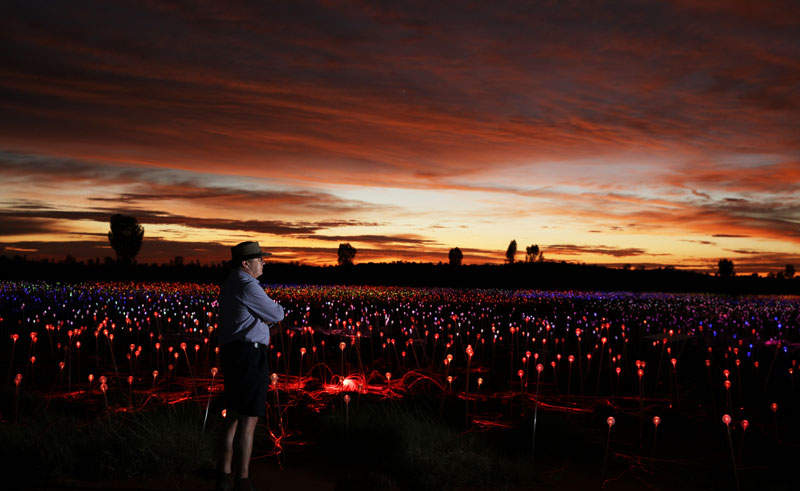 australia uluru bruce munro at field of light