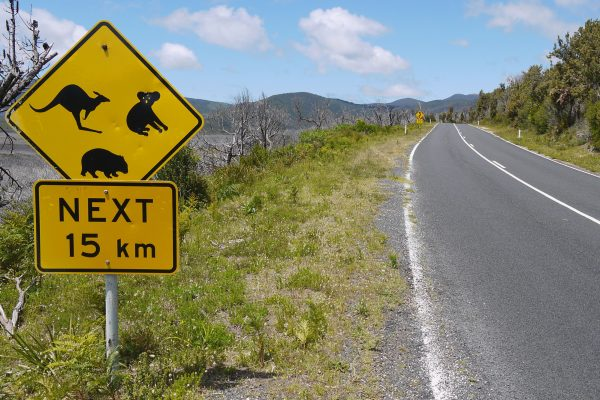 australia victoria wilsons promontory national park road sign astk