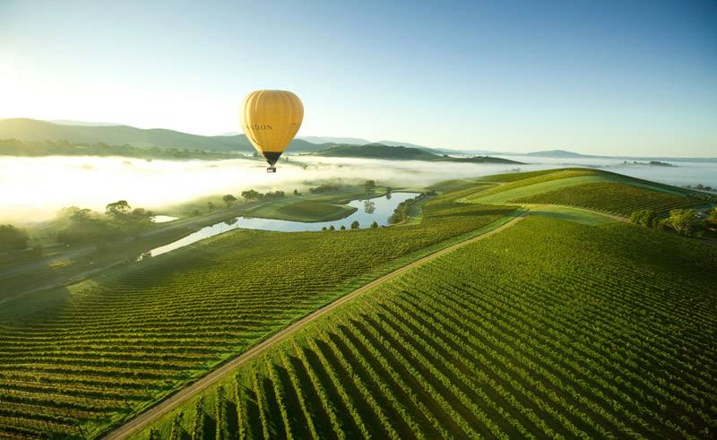 australia victoria yarra valley hot air ballooning