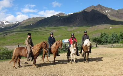 east iceland horse riding in breiddalur guided tour