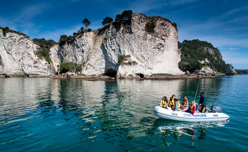 hahei explorer at cathedral cove boat bay of islands1