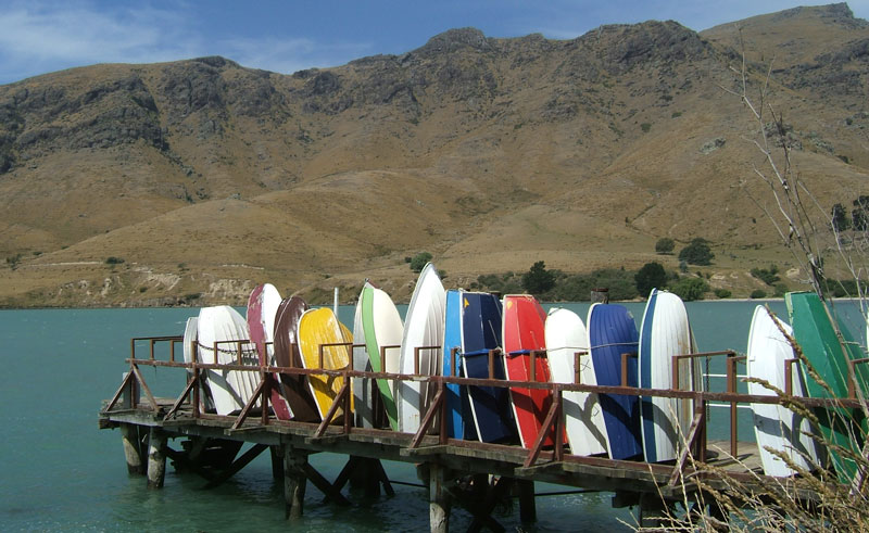 new zealand akaroa and banks peninsula tour2