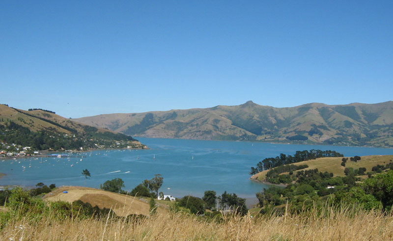 new zealand akaroa and banks peninsula tour3