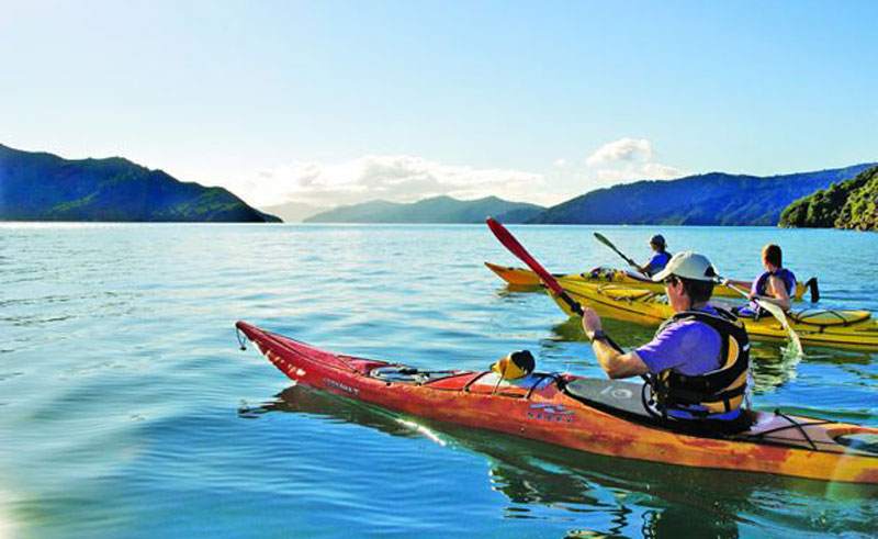 new zealand guided sea kayaking picton