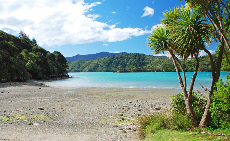 new zealand marlborough queen charlotte track beach as