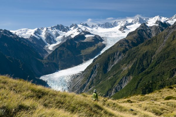 new zealand west coast fox glacier valley twc