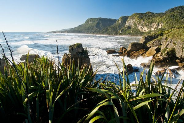 new zealand west coast punakaiki view twcst