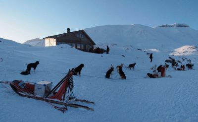 nordenskiold lodge huskies